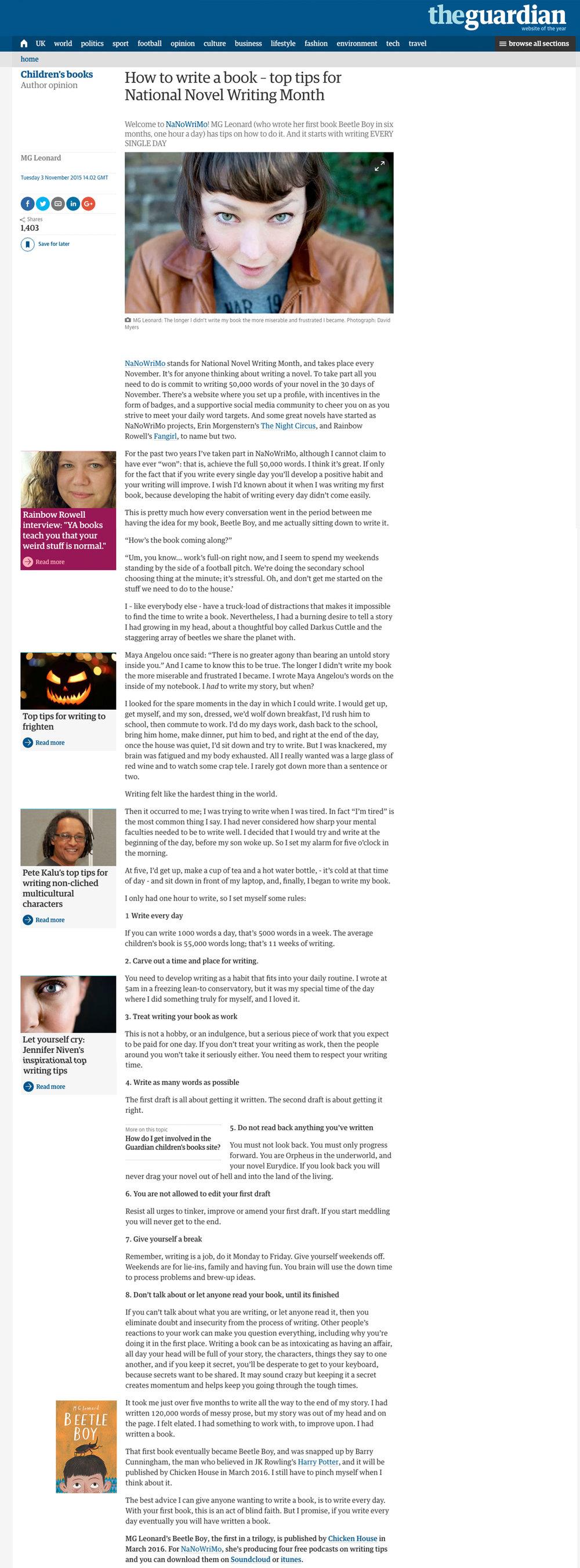 guardianNANOWRIMO.jpg