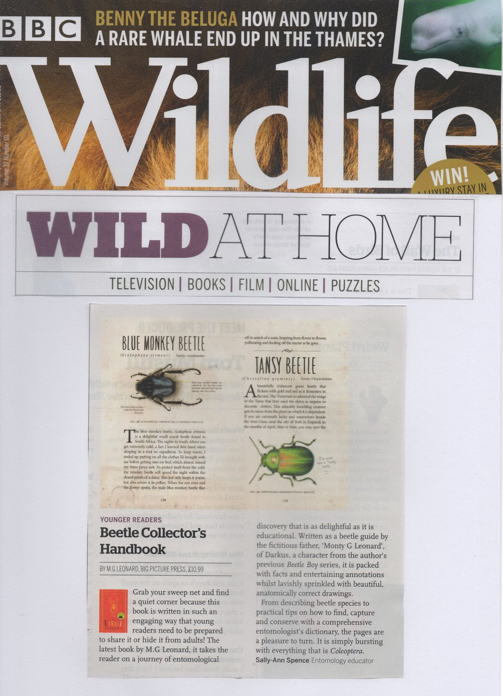 BCHB_BBCWildlife_ReviewJan2019.jpeg