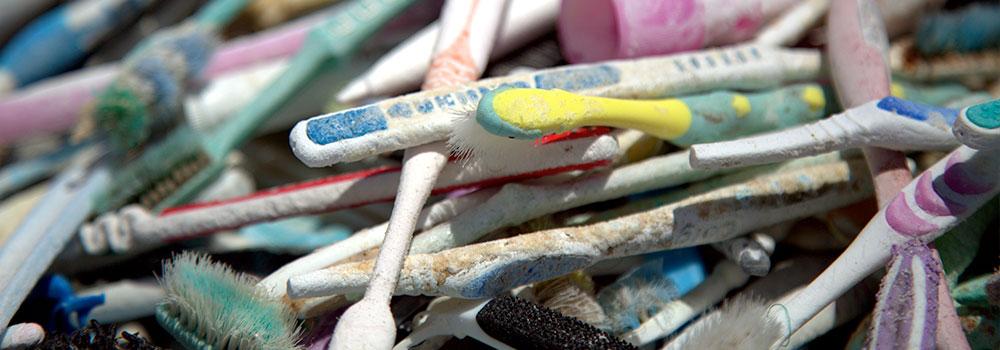 toothbrushheader.jpg