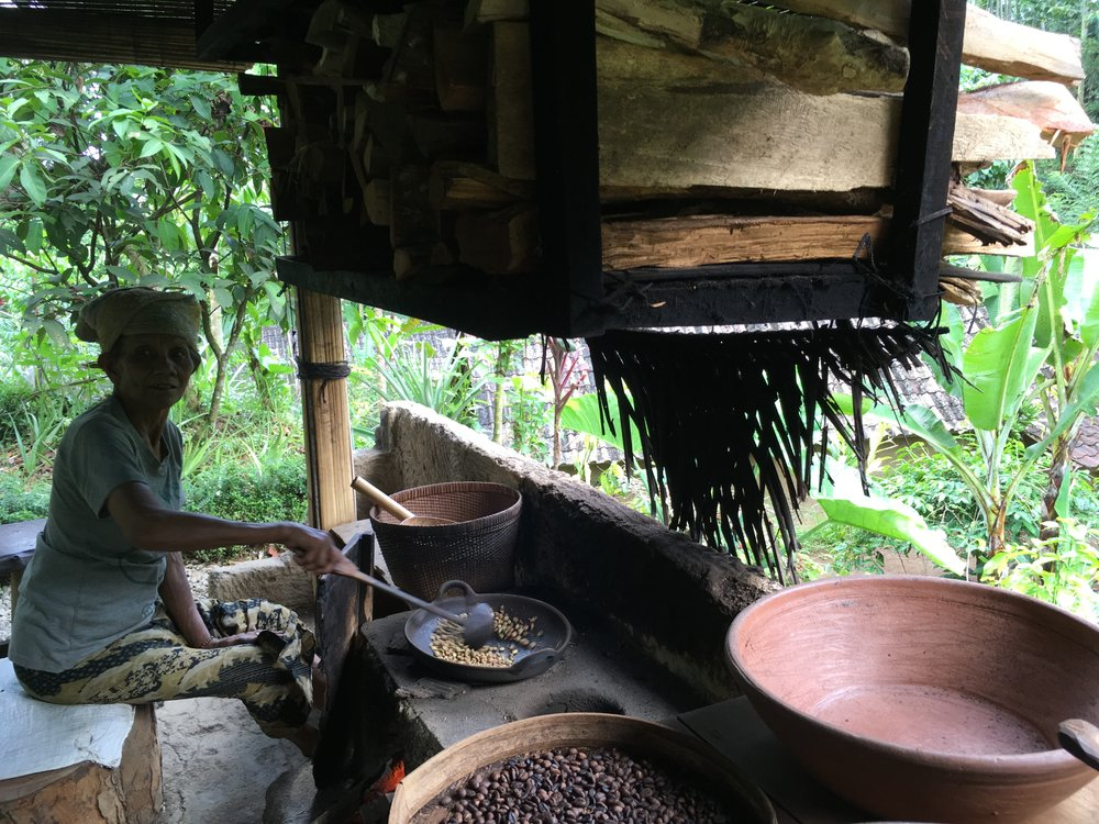 Roasting coffee beans, female (beans) only