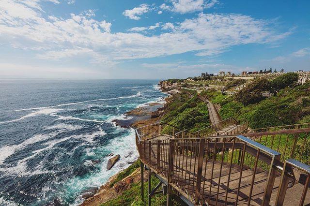 Wandering through Aussie summer days in a #summerdaze • • • • • #aussie #sydney #seeaustralia #aussiesofinstagram #australiagram #summertime #exploreaustralia #ig_australia #beachlife #sunshine #aussienation #downunder #oz #instralia #aussiephotos #igaustralia #aussiegram #instaozzie #getoutside #exploremore #discover #igtravel #optoutside #letsgosomewhere #paradise #beachday #discoveraustralia #igersaustralia #bronte