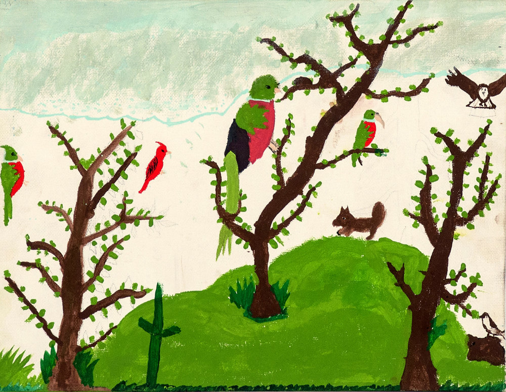 I want to fly... - José Noe Estrada Muñoz, Age 11, (2013)