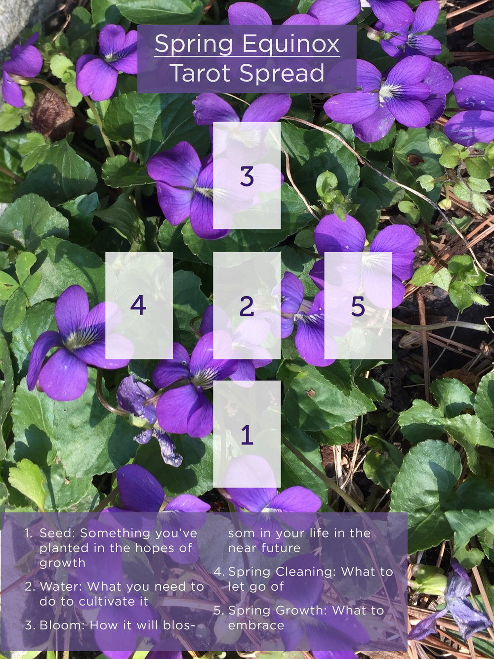 Spring Equinox Ostara Tarot Spread for Growth and Self-Care