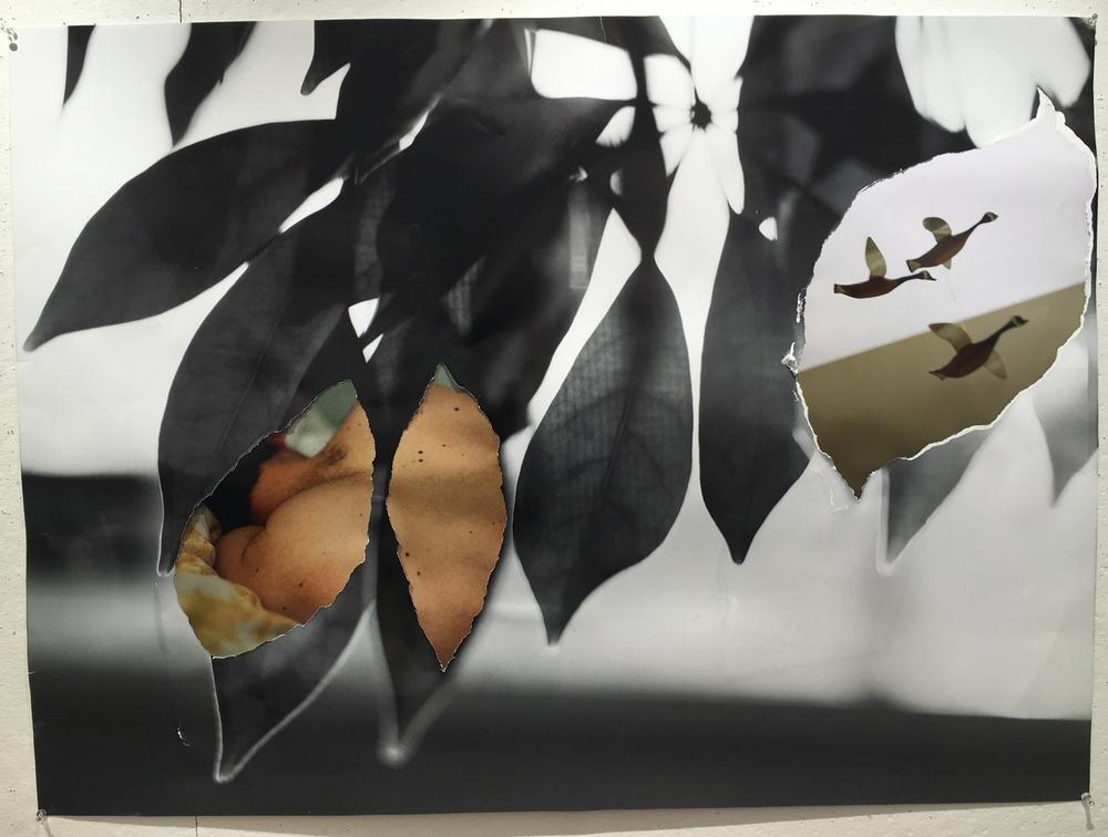 Skin Leaves.jpg
