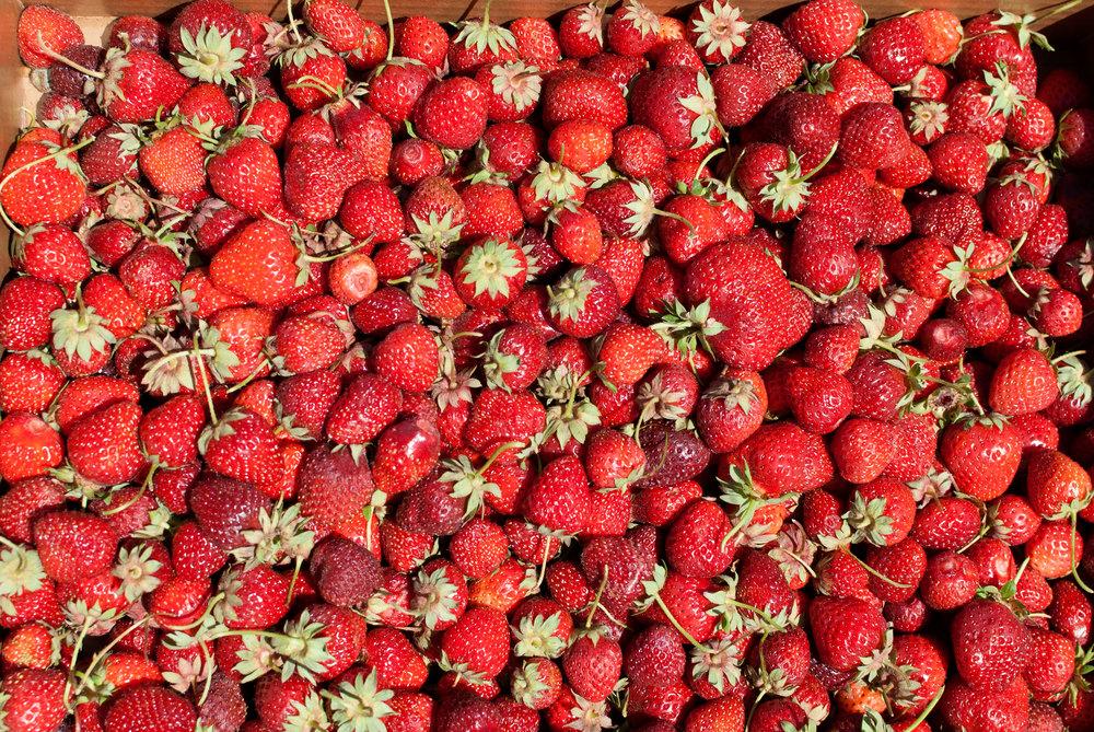 strawberry-jam_05