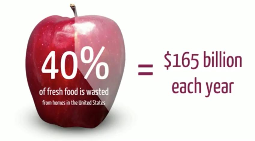 Food waste in the United States. Acaroglu, L. (2013)