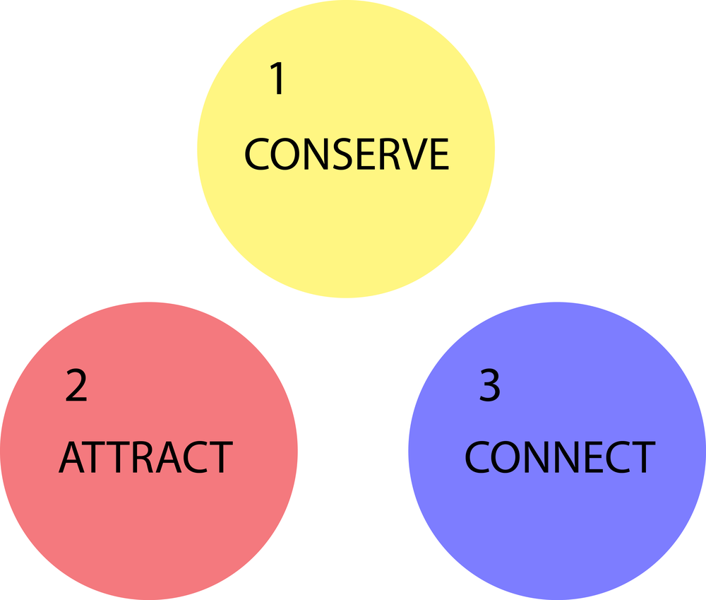Three Principals of the Aesthetics of Ecology according to Lance Hosey