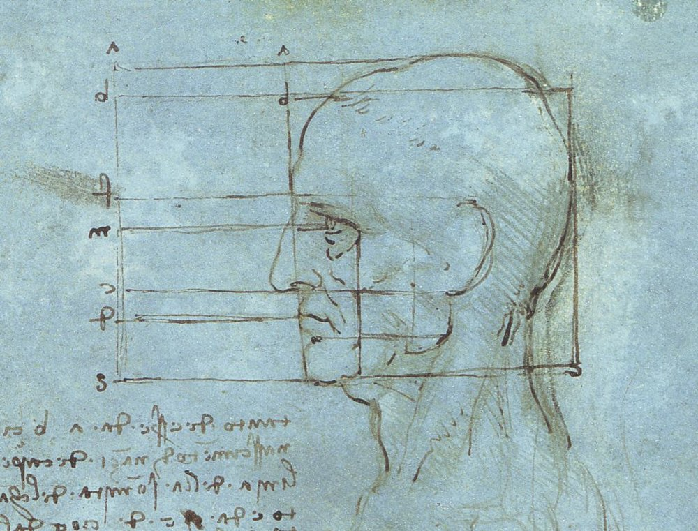 Proportions of the Head. (1488-9) Da Vinci.