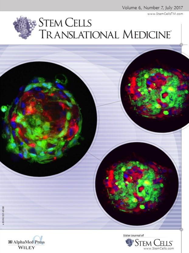 Cover Feature:  Neo-Islets created by scientists at SymbioCellTech for the treatment of insulin-dependent diabetes.