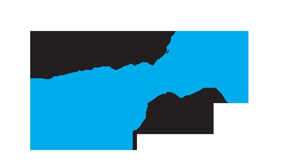 FringeLogo2017-1.png