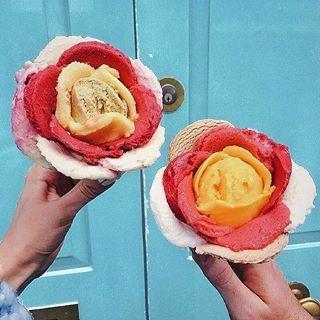 8082a2403535e6a3684077dfe9c0c985--cream-flowers-cream-roses.jpg
