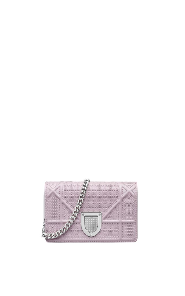 Dior Baby Diorama Pouch