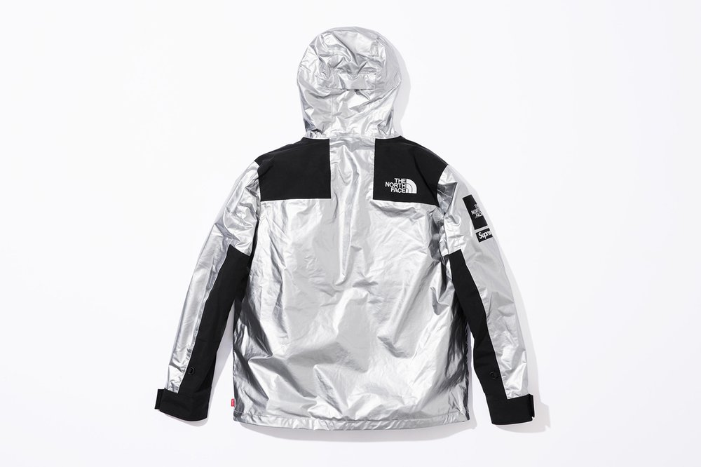 supreme-the-north-face-spring-2018-metallic-9.jpg