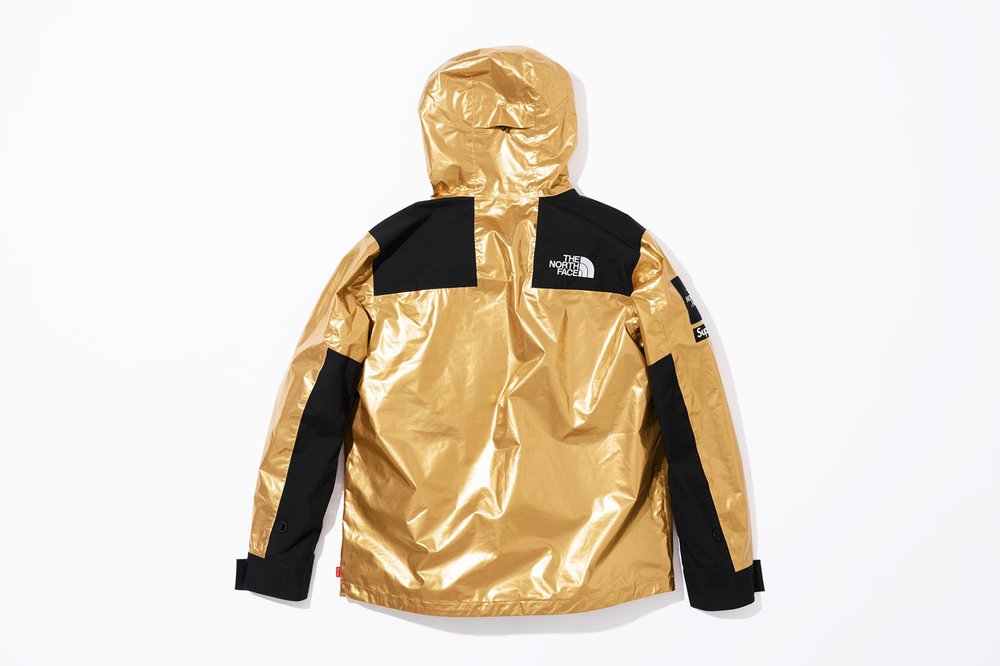 supreme-the-north-face-spring-2018-metallic-7.jpg