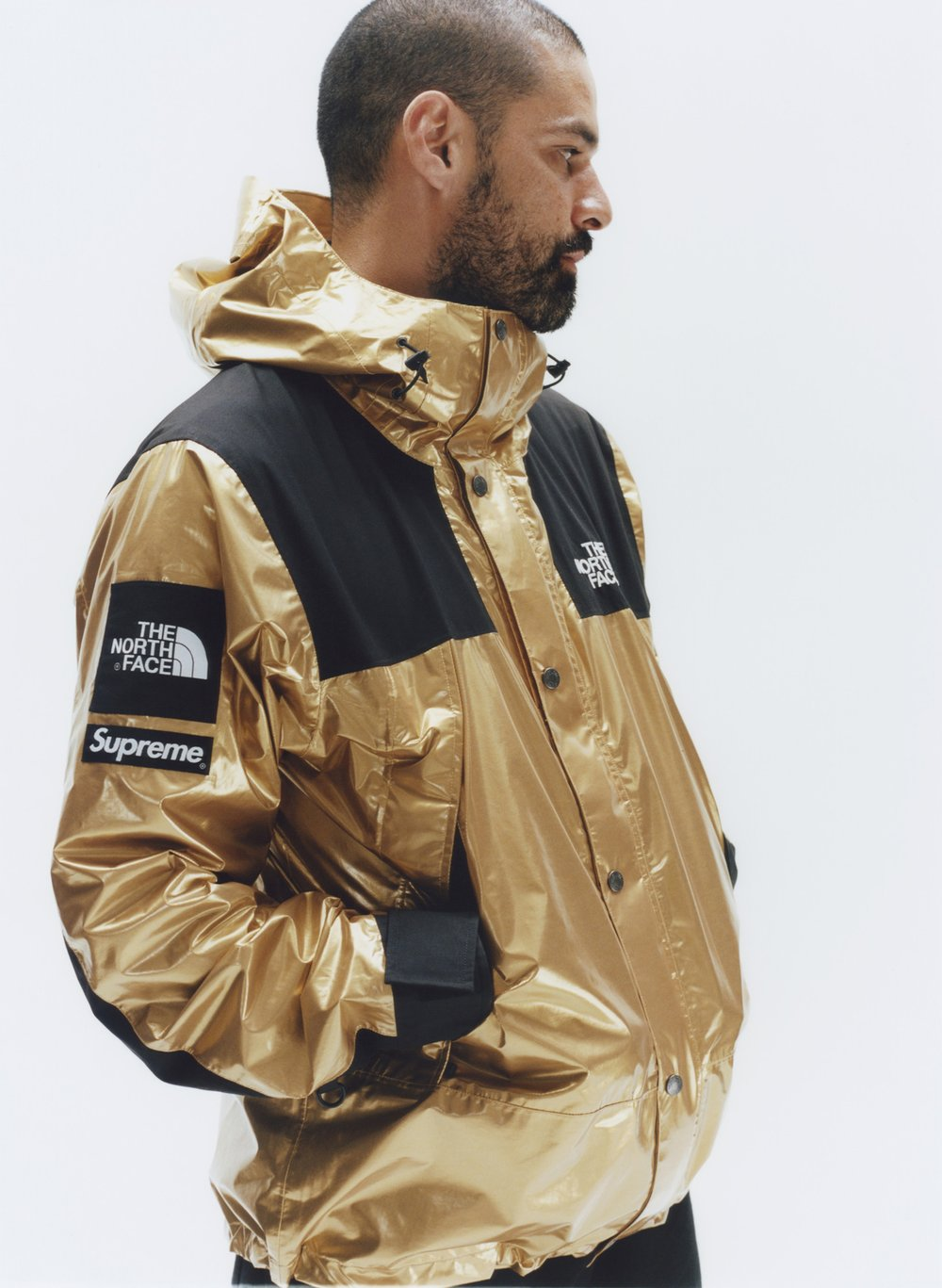 supreme-the-north-face-spring-2018-metallic-2.jpg