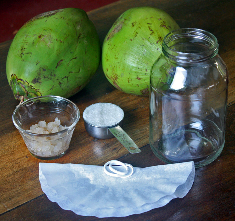coconut water kefir and keto drink recipe