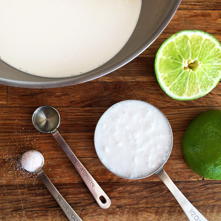 Keto coconut mousse recipe for dessert. Make this coconut lime mousse on the ketogenic diet.