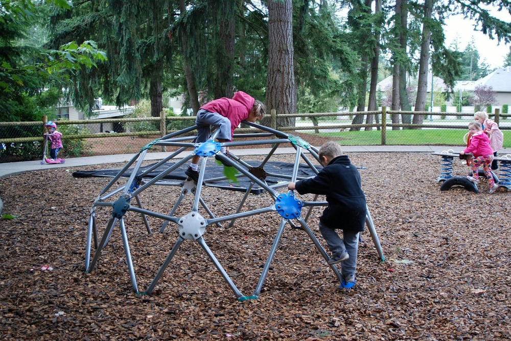 Our large play area is fenced and equipped with opportunities to climb, swing, dig, run and play!