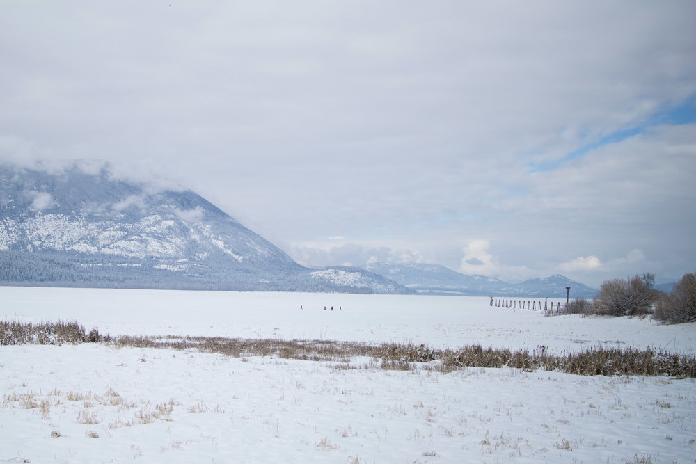 A family of 4 snowshoes on frozen Shuswap Lake in Salmon Arm. (IMAGE: www.aaronjbarr.com)