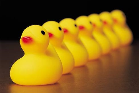 Big brothers & big sisters to-be get a free rubber ducky!