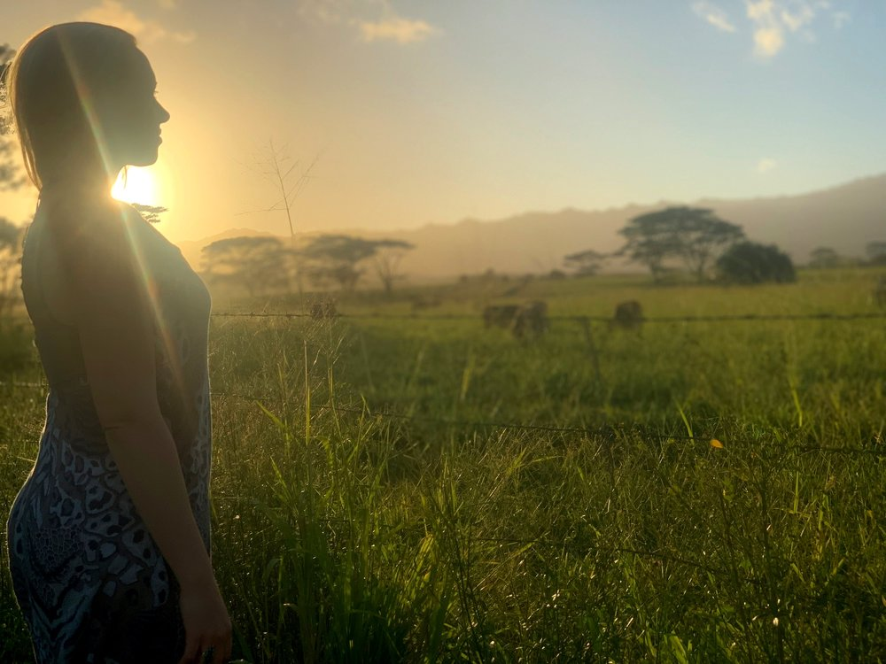 Magical moment where we stopped to watch the sunset and listen to the cows in the field.