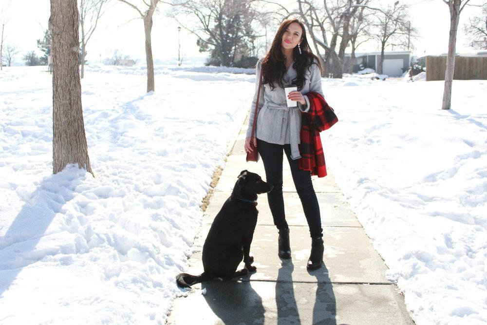 flannelscarfgreycoat