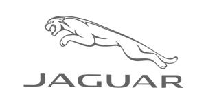 jaguar grey.jpg