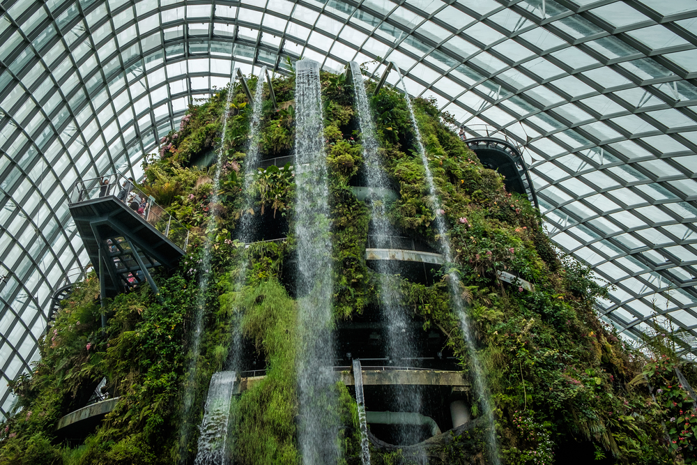 The Cloud Forrest - Gardens by the Bay