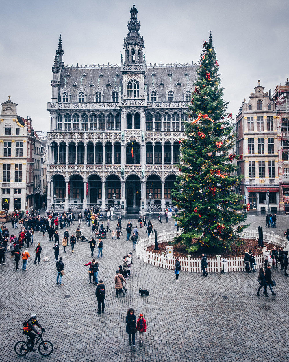 Christmas tree at Grand Place, Brussels
