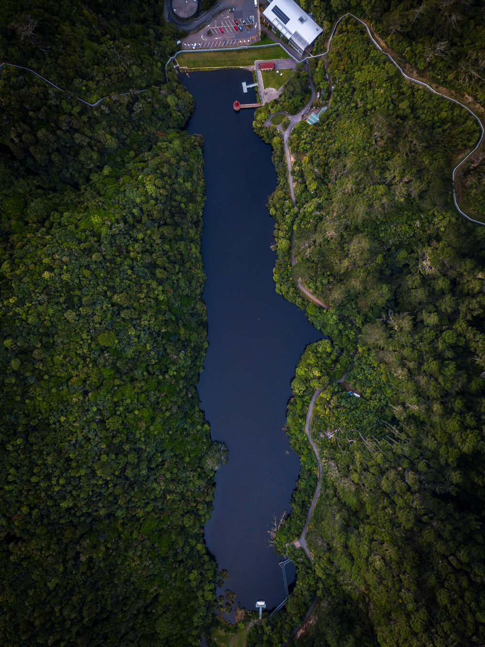 Lake from above