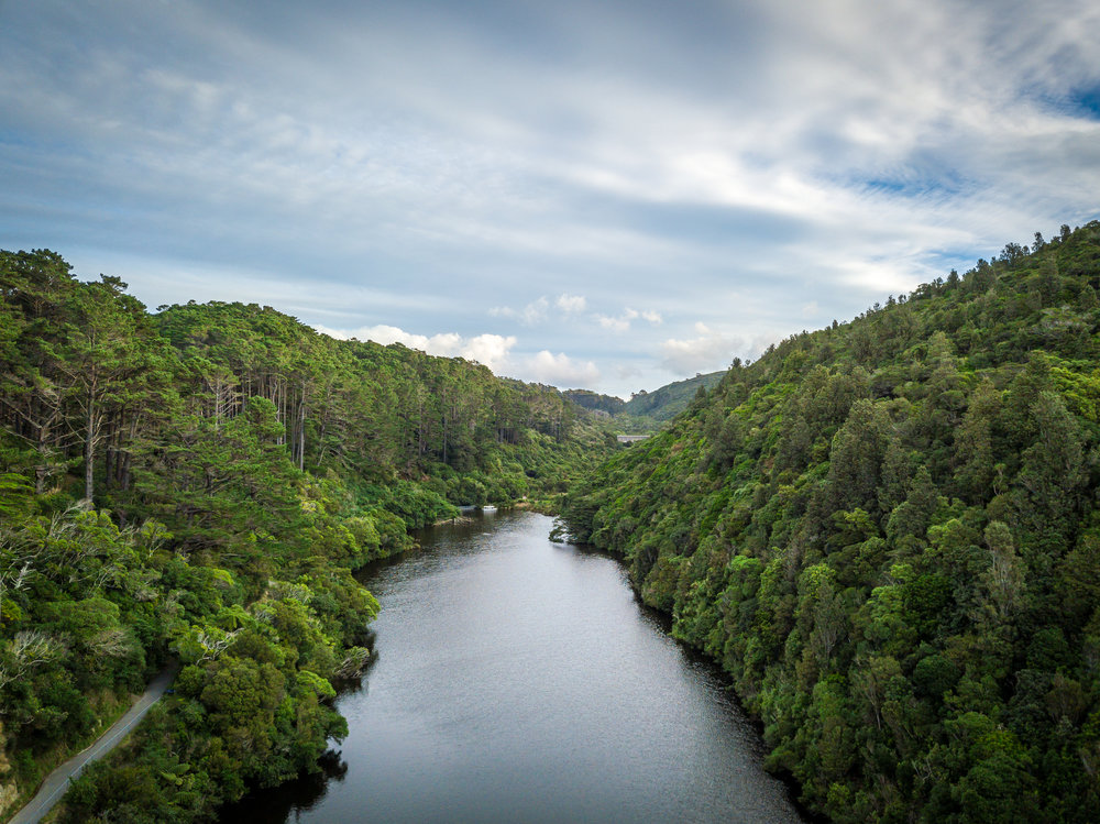 Upper lake in Zealandia