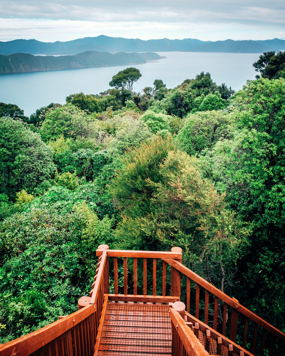 Motuara Island Lookout Point