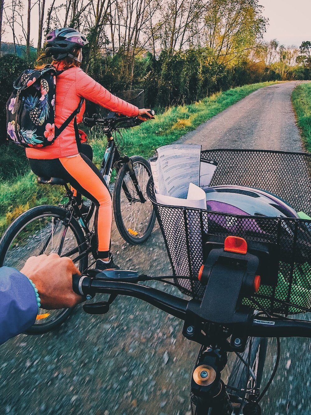 Cycling through Vineyards
