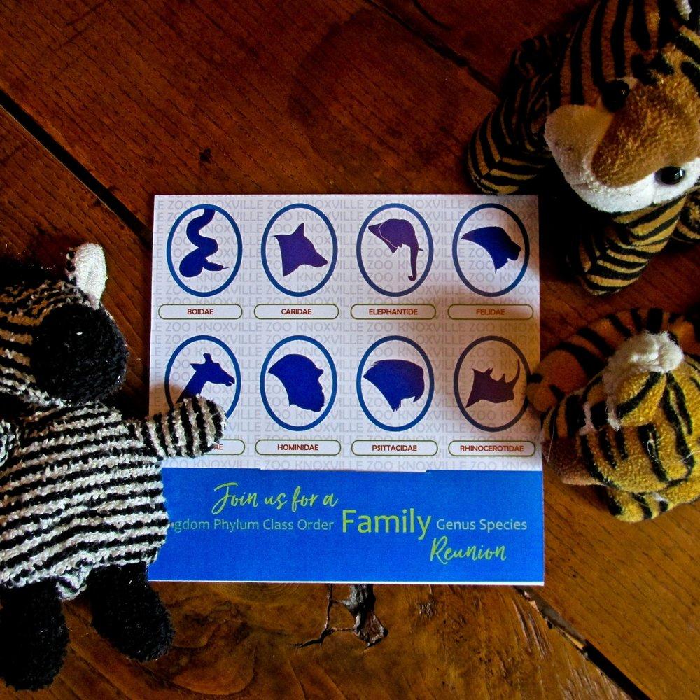 Zoo Brochure