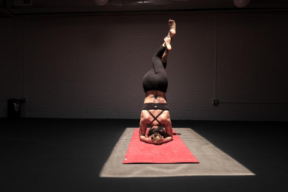 Zebra Mats_Evolve Yoga_Denver_HR_WDP_6059_2016waynedavis_.JPG