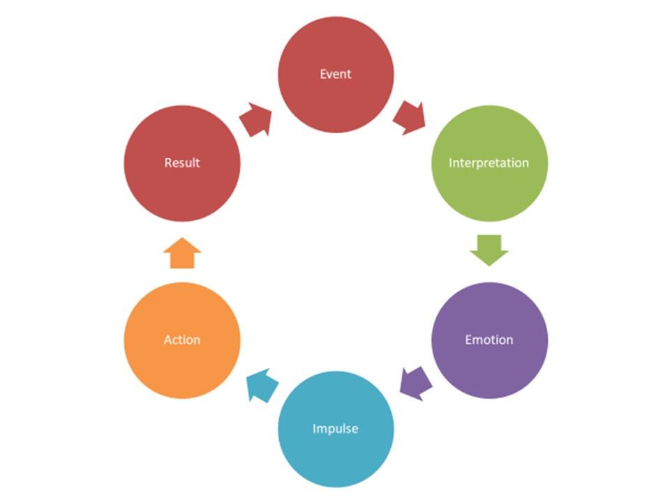 behavior chain.jpg