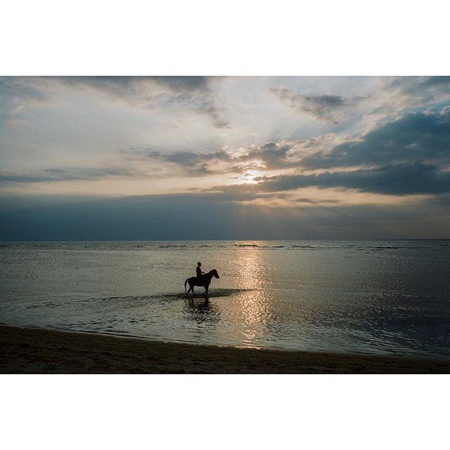 Gili Trawangan, Water horse