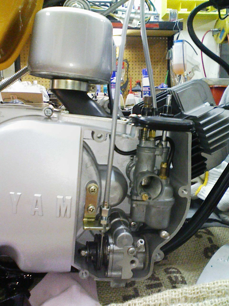KC3A0226.JPG