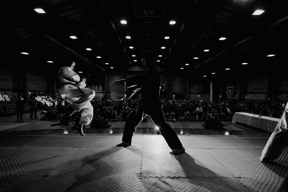 Sunny-Kim-Taekwondo-5.jpg