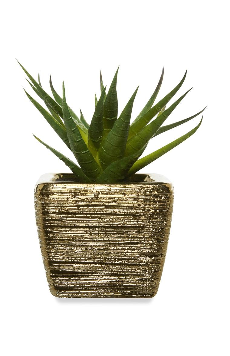 Faux Mini Plant, Primark £2