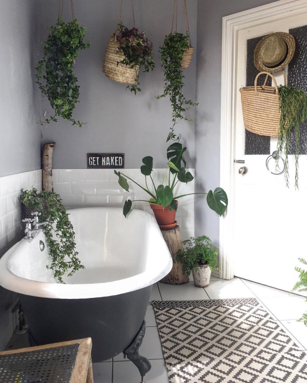 Dee Campling, plant expert and very good at bathroom photos.