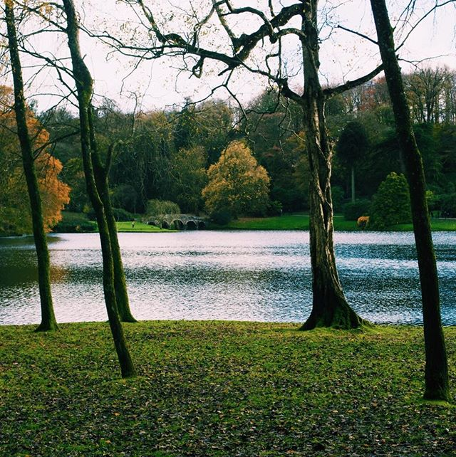 Photo-a-day #18 - Winter trees with no leaves give you great views of the lake at Stourhead • • • #photoaday #stourhead #nationaltrust #winter #lake #ipreview @preview.app