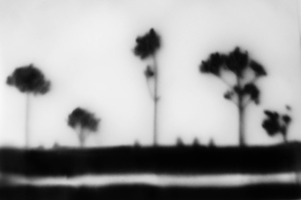Constructed landscape #2            Twigs, paper, a glass layer and a Lensbaby.
