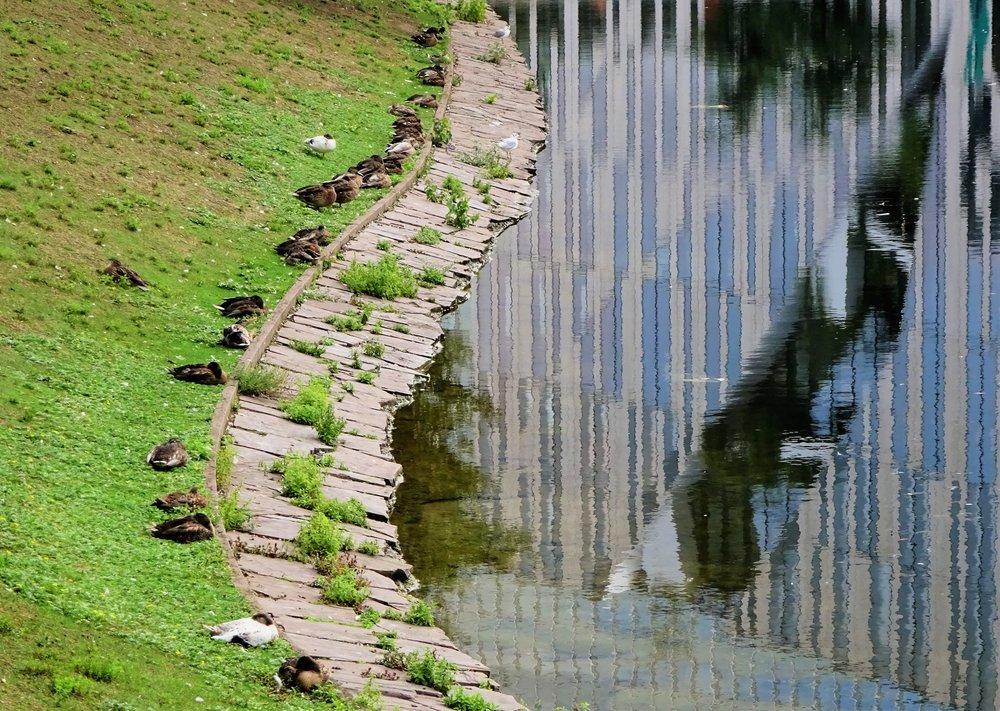 *Фото для равновесия (в прошлые выходные в это время в центре Дюссельдорфа так)