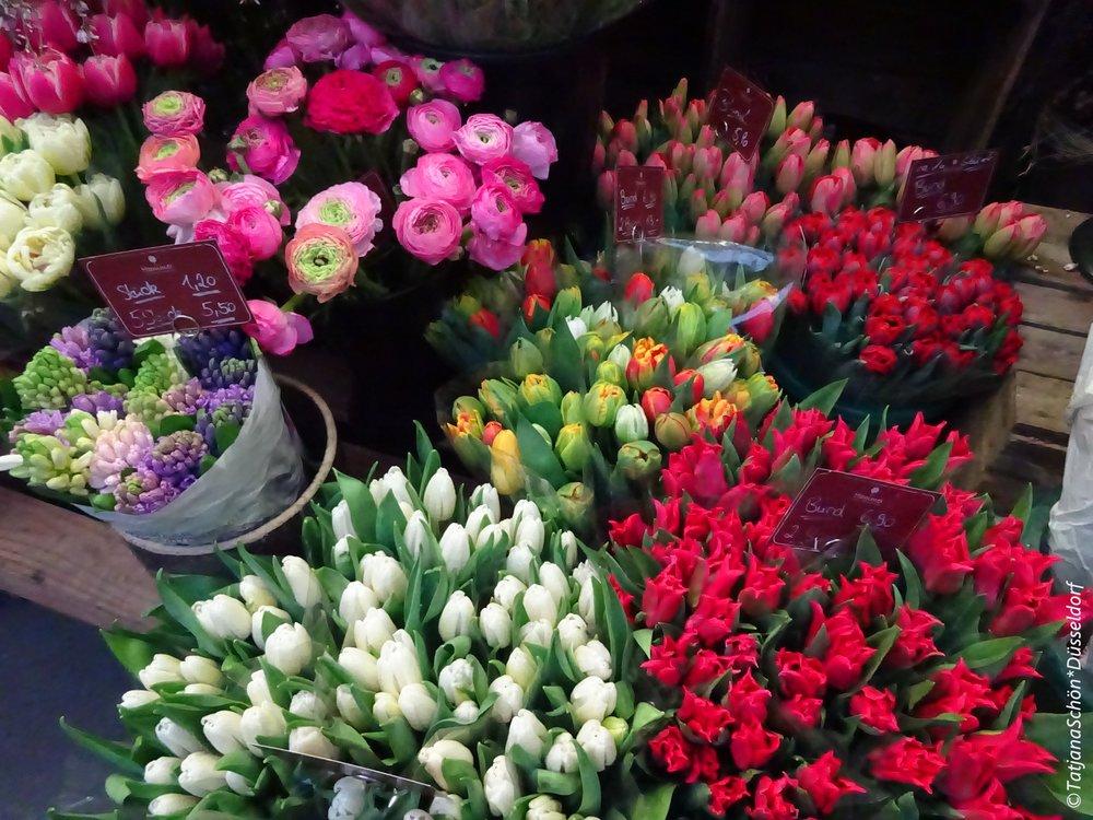 Цветы с рынка Карлсплатц