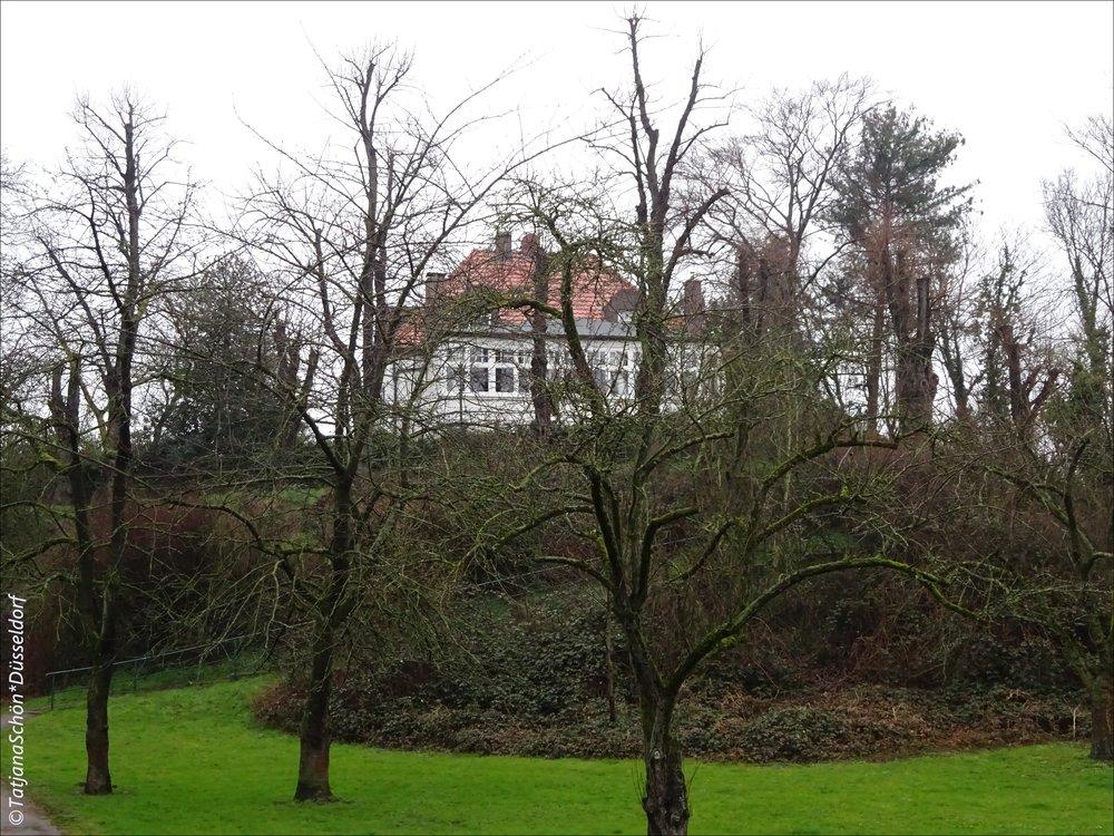 Вид на дом на валу БарбароссыBarbarossawall