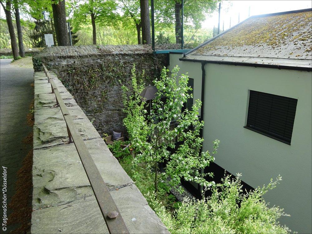 Siegen-natur108-2018.JPG