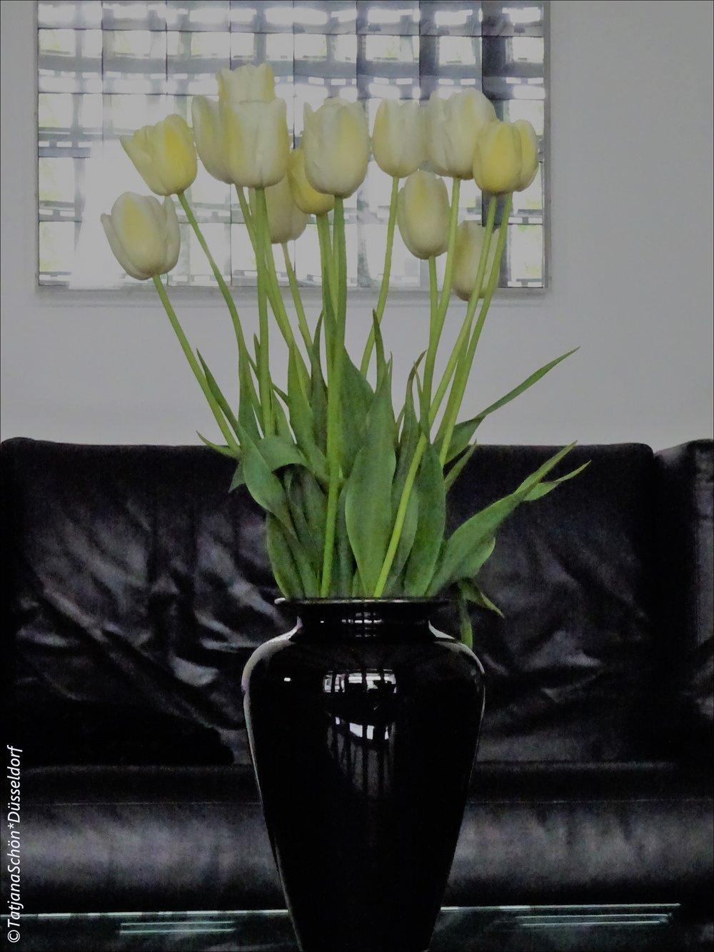 Вот эти тюльпаны из Зигена - спонсор вдохновенья в дождливый день рассказать о предыдущем дне)