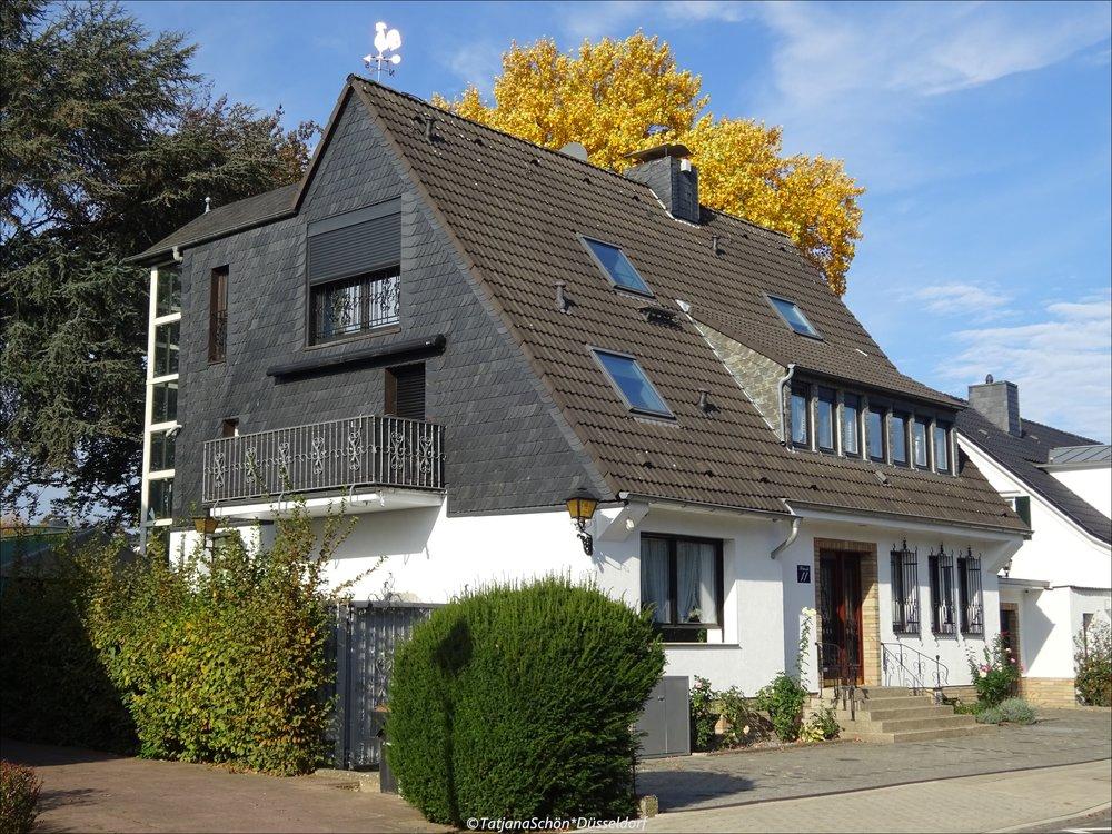 2008-10-17.JPG