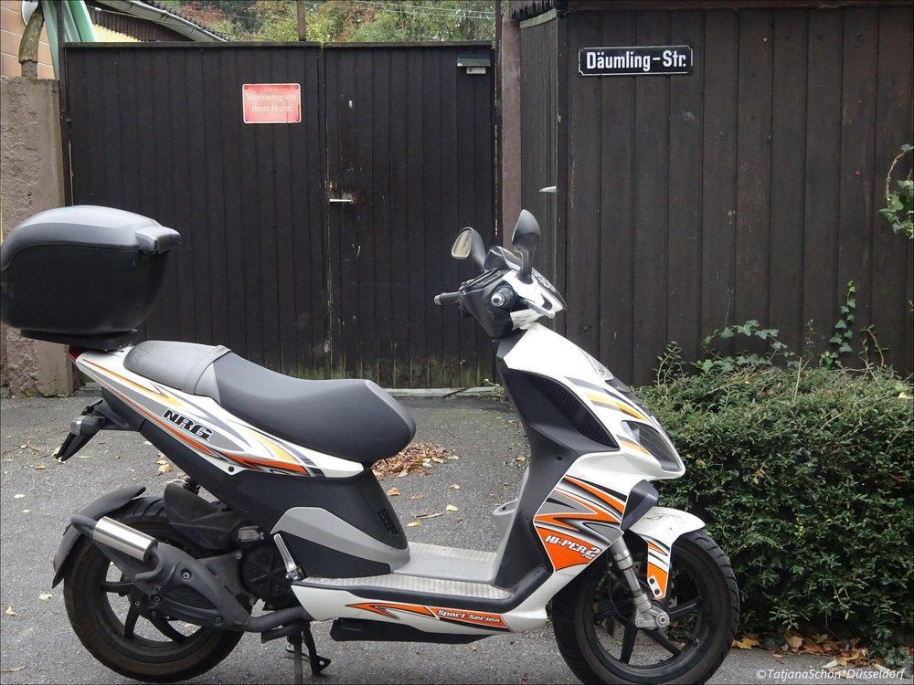 2008-10-1029.JPG
